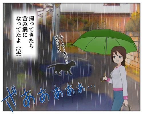 黒猫とおる_001