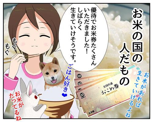 お米券_001