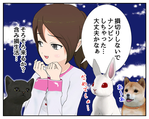 なんぴん_001